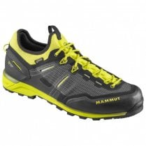 Men's Alnasca Knit Low GTX Approach Shoes
