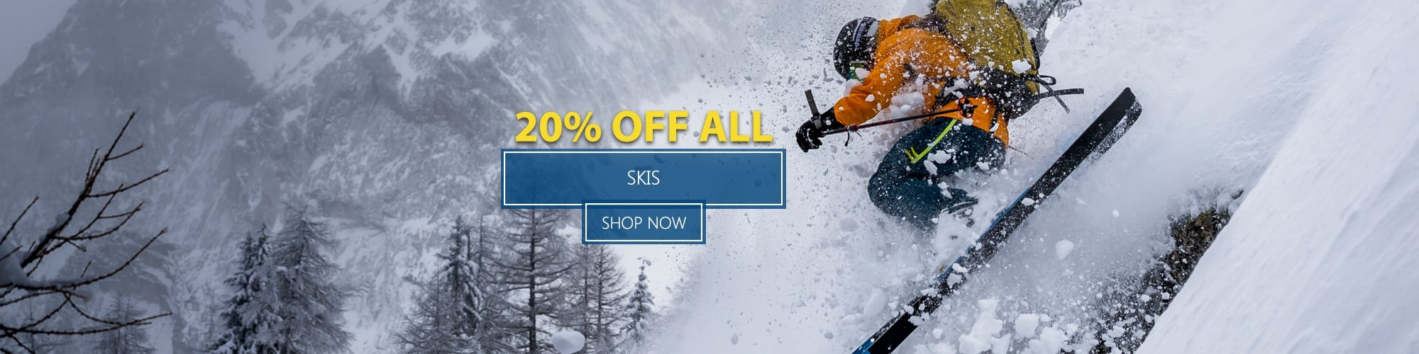 20% Off All Skis