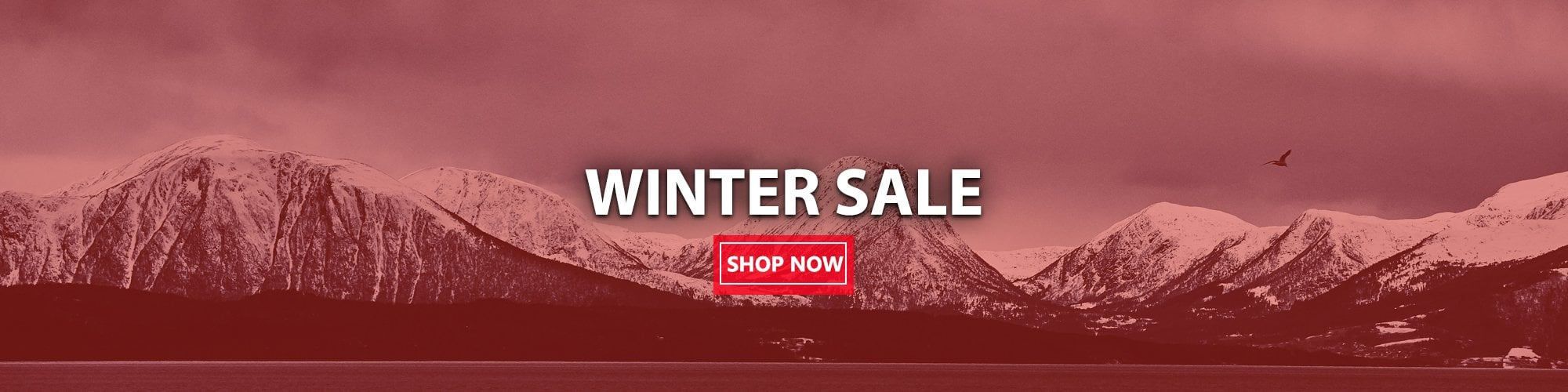 Winter Sale 2019
