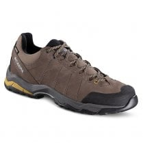 Men's Moraine Plus GTX Shoe